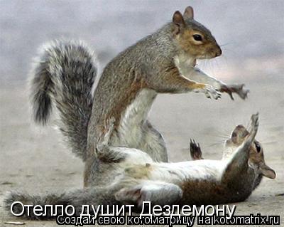 http://kotomatrix.ru/images/lolz/2009/05/11/PA.jpg