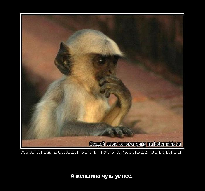 Котоматрица:  Мужчина должен быть чуть красивее обезьяны. А женщина чуть умнее.