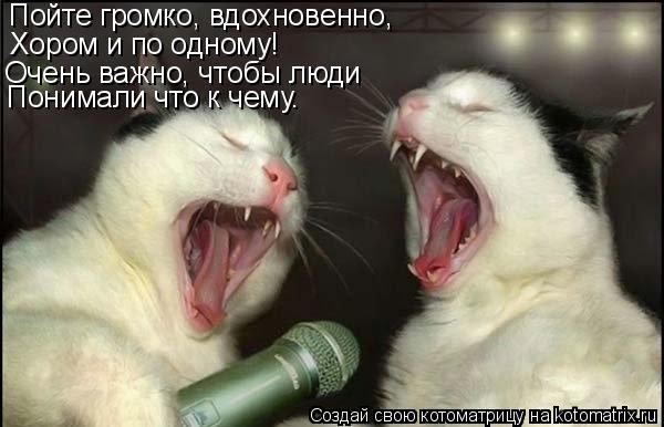 Котоматрица: Пойте громко, вдохновенно, Хором и по одному! Очень важно, чтобы люди Понимали что к чему.
