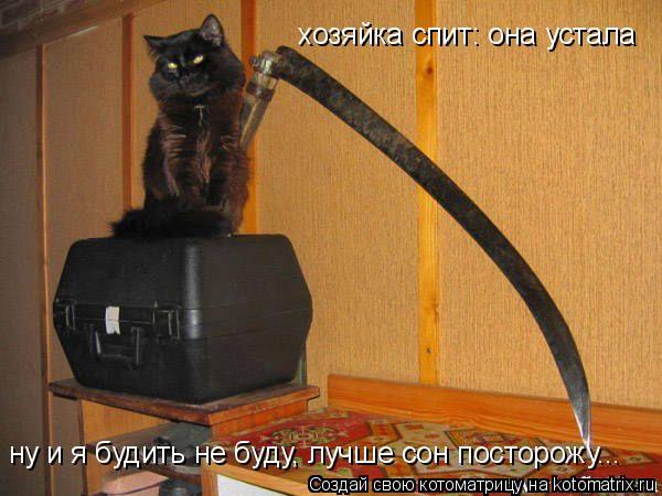 Котоматрица: хозяйка спит: она устала  ну и я будить не буду, лучше сон посторожу...