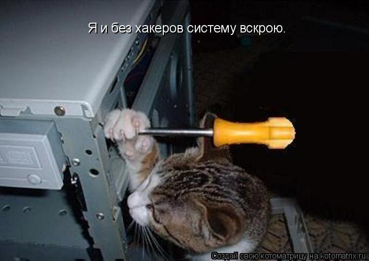 Котоматрица: Я и без хакеров систему вскрою.