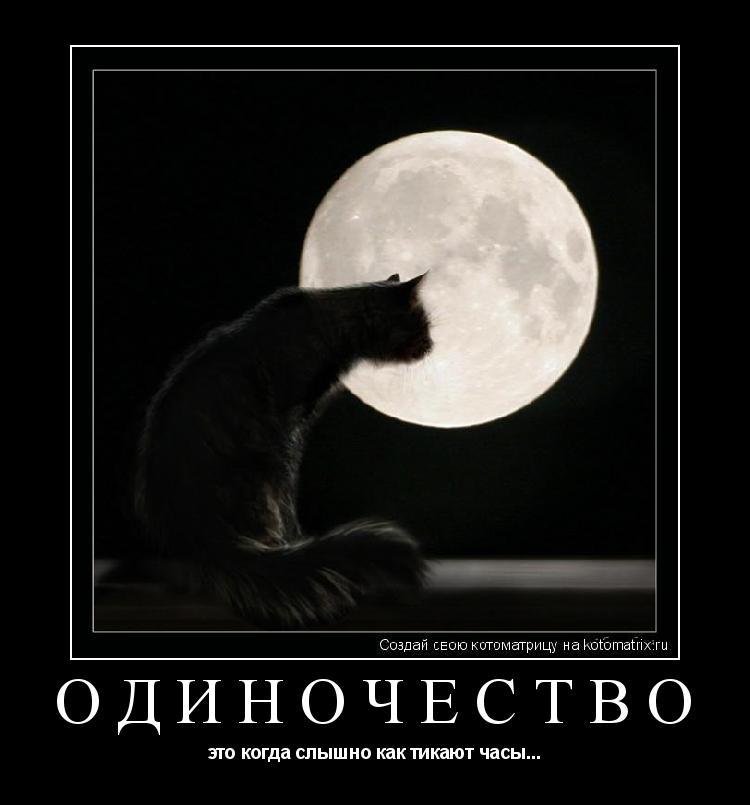 Котоматрица: одиночество это когда слышно как тикают часы...
