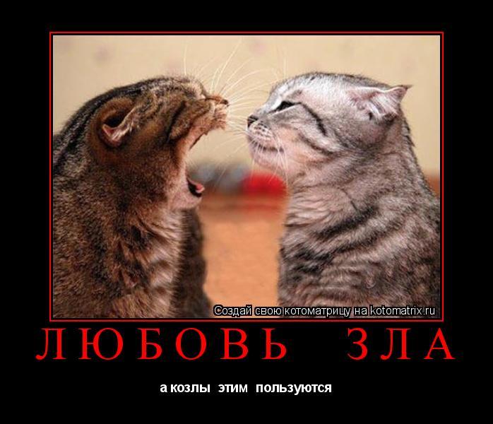 Котоматрица: любовь  зла а козлы  этим  пользуются