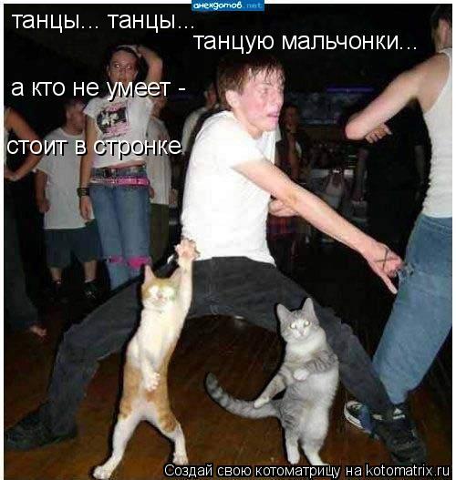Котоматрица: танцы... танцы...  стоит в стронке а кто не умеет - танцую мальчонки...