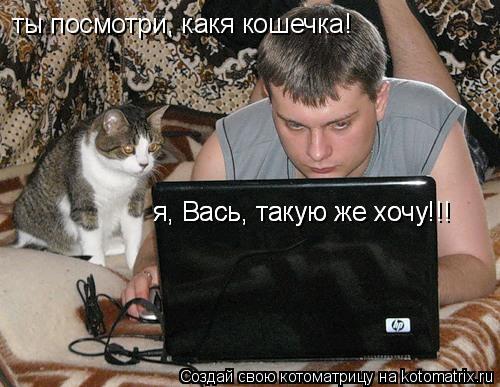 Котоматрица: ты посмотри, какя кошечка! я, Вась, такую же хочу!!! я, Вась, такую же хочу!!!