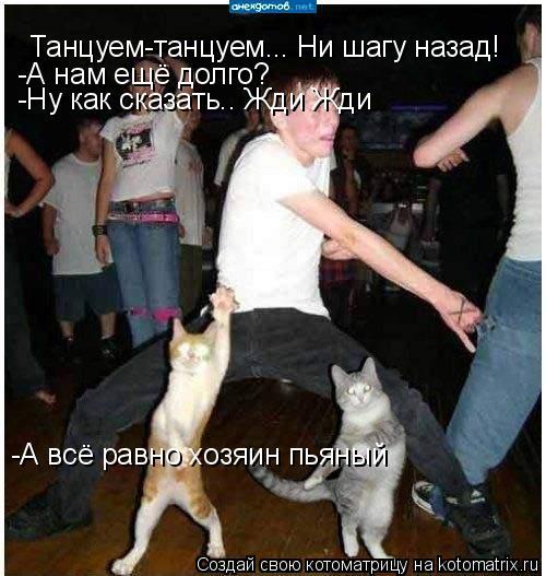 Котоматрица: Танцуем-танцуем... Ни шагу назад! -А нам ещё долго? -Ну как сказать.. Жди Жди  -А всё равно хозяин пьяный
