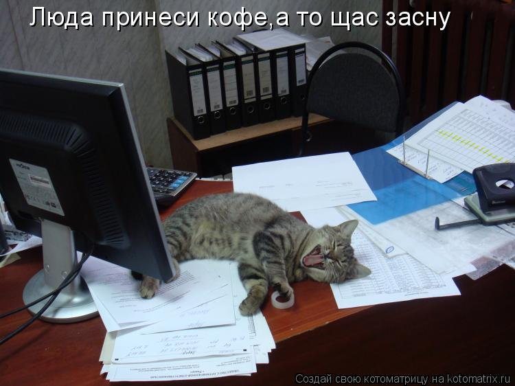 Котоматрица: Люда принеси кофе,а то щас засну