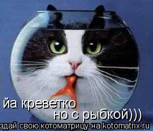 Котоматрица: йа креветко но с рыбкой)))