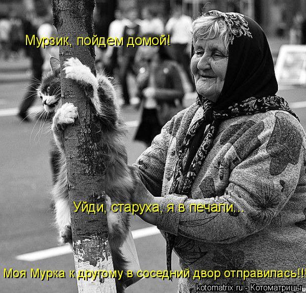 Котоматрица: Мурзик, пойдем домой! Уйди, старуха, я в печали... Моя Мурка к другому в соседний двор отправилась!!!!