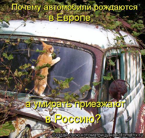 Котоматрица: Почему автомобили рождаются  в Европе,  а умирать приезжают  в Россию?