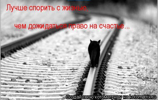 Котоматрица: Лучше спорить с жизнью, чем дожидаться право на счастье... Лучше спорить с жизнью,  чем дожидаться право на счастье...