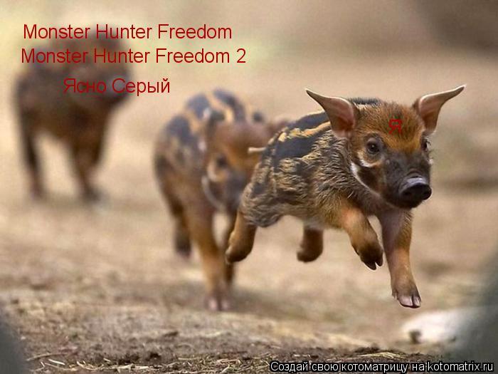 Котоматрица: Monster Hunter Freedom Monster Hunter Freedom 2 Ясно Серый Я
