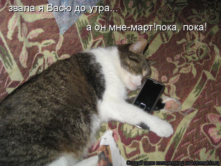Котоматрица: а он мне-март!пока, пока! звала я Васю до утра...