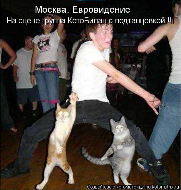 Котоматрица: Москва. Евровидение группа котоБилан по- прежнему лидирует!!! На сцене группа КотоБилан с подтанцовкой!!!!