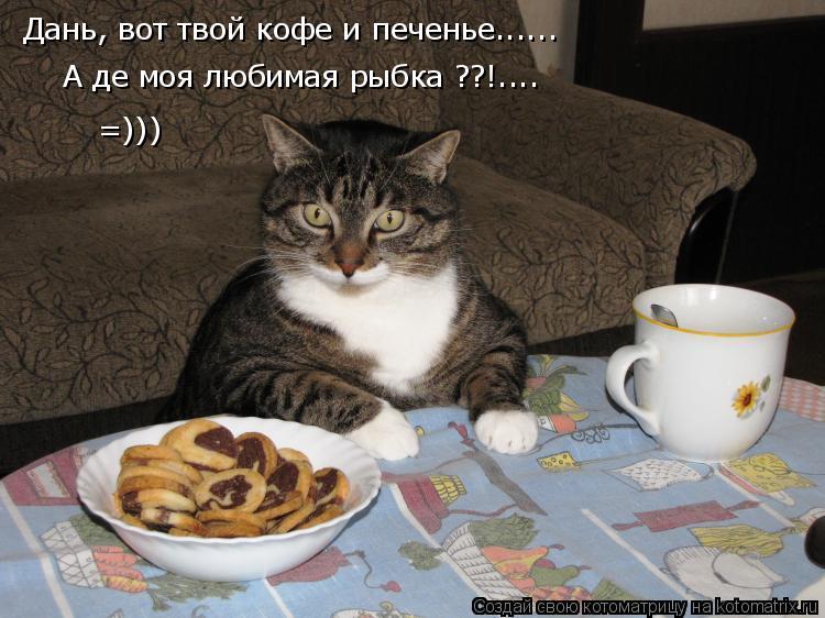Котоматрица: Дань, вот твой кофе и печенье...... А де моя любимая рыбка ??!.... =)))