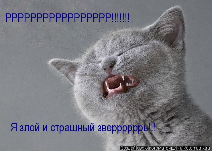 Котоматрица: Я злой и страшный зверрррррь!!! РРРРРРРРРРРРРРРРР!!!!!!!