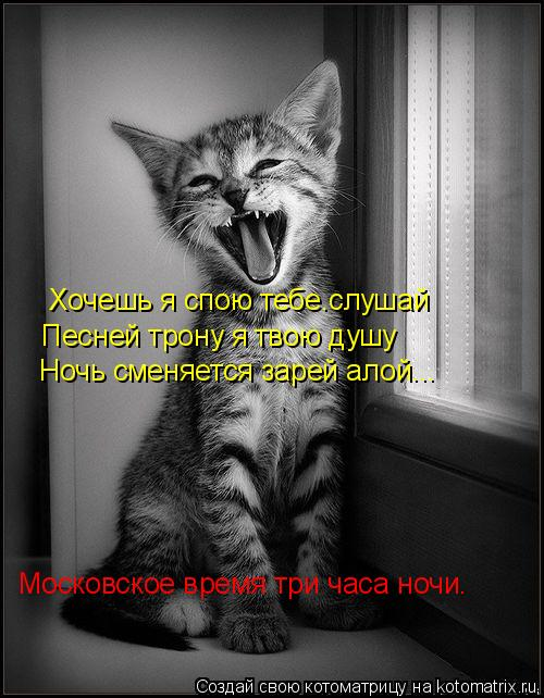 Котоматрица: Хочешь я спою тебе.слушай Песней трону я твою душу Ночь сменяется зарей алой... Московское время три часа ночи.