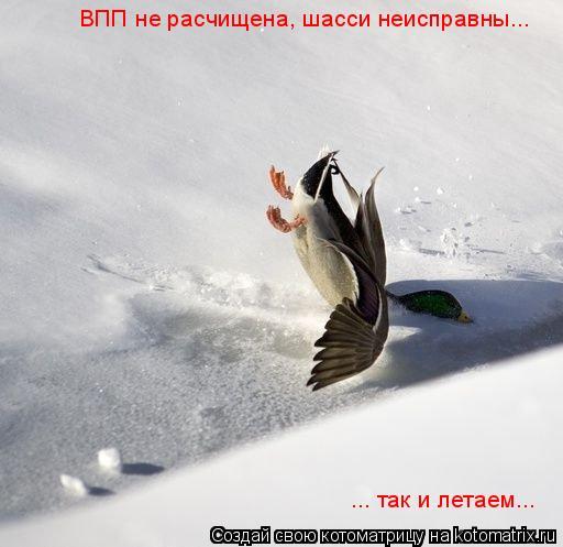 Котоматрица: ВПП не расчищена, шасси неисправны...  ... так и летаем...