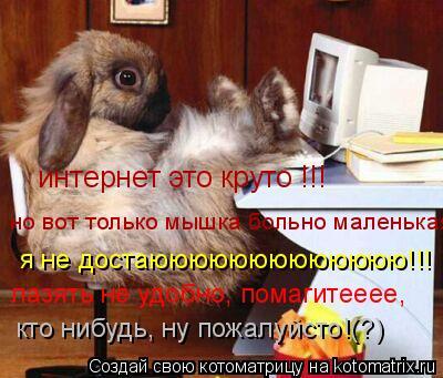 Котоматрица: интернет это круто !!! но вот только мышка больно маленькая  я не достаююююююююююююю!!! лазять не удобно, помагитееее, кто нибудь, ну пожалуйс