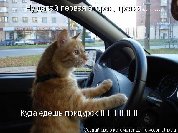 Котоматрица: Ну давай первая вторая, третяя........... Куда едешь придурок!!!!!!!!!!!!!!!!!