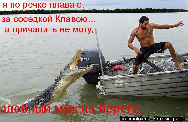 Котоматрица: я по речке плаваю,  за соседкой Клавою... а причалить не могу, злобный муж на берегу...