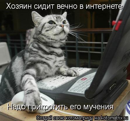 Котоматрица: Хозяин сидит вечно в интернете Надо прикротить его мучения