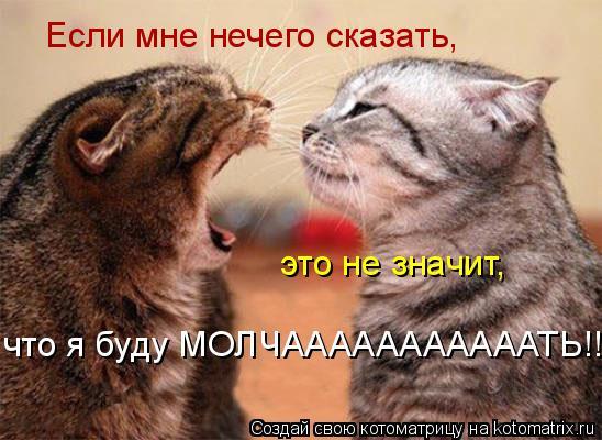 Котоматрица: Если мне нечего сказать, это не значит, что я буду МОЛЧАААААААААААТЬ!!