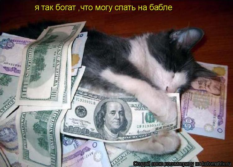 Котоматрица: я так богат ,что могу спать на бабле