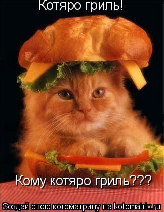 Котоматрица: Котяро гриль! Кому котяро гриль???