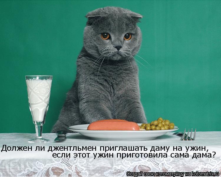 Котоматрица: Должен ли джентльмен приглашать даму на ужин, если этот ужин приготовила сама дама?