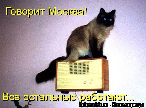 Котоматрица: Говорит Москва! Все остальные работают...