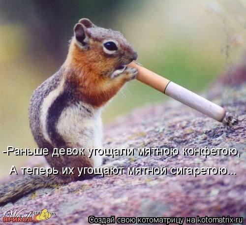 Котоматрица: -Раньше девок угощали мятною конфетою,  А теперь их угощают мятной сигаретою...