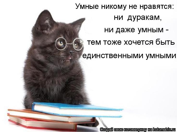 Котоматрица: Умные никому не нравятся:  ни  дуракам,  ни даже умным - тем тоже хочется быть  единственными умными