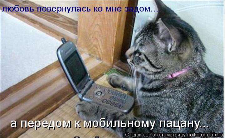 Котоматрица: любовь повернулась ко мне задом... а передом к мобильному пацану...
