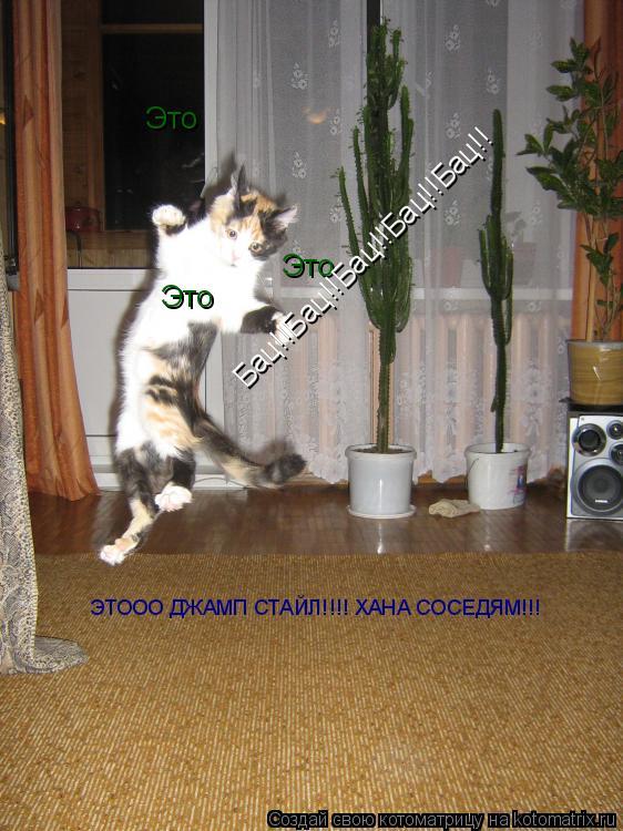Котоматрица: Это  Это  Это  Бац!!Бац!!Бац!!Бац!!Бац!! ЭТООО ДЖАМП СТАЙЛ!!!! ХАНА СОСЕДЯМ!!!