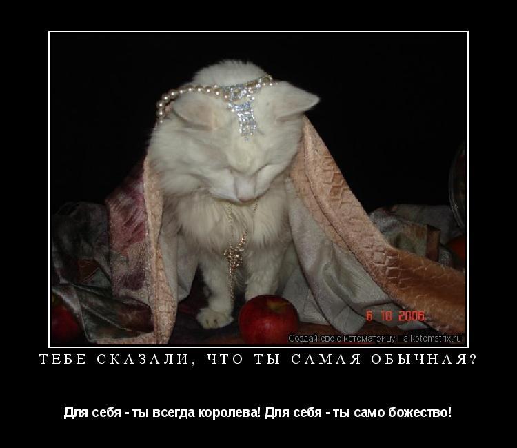Котоматрица: Тебе сказали, что ты самая обычная? Для себя - ты всегда королева! Для себя - ты само божество!