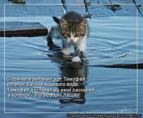 Котоматрица: С причала рыбачил кот Тимофей, котёнок Васька ходил по воде. Тимофей доставал из реки пескарей, а котёнок - большущих лещей!