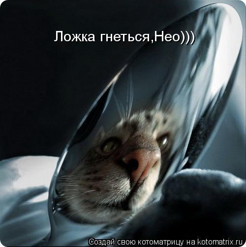 Котоматрица: Ложка гнеться,Нео)))
