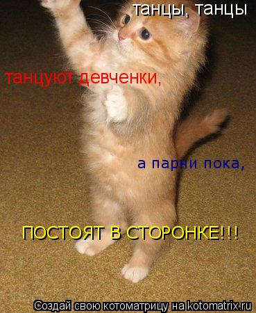 Котоматрица: танцы, танцы танцуют девченки, а парни пока, ПОСТОЯТ В СТОРОНКЕ!!!