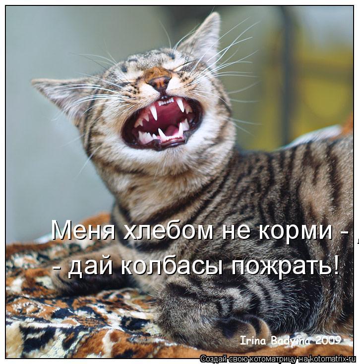 Котоматрица: Меня хлебом не корми - дай колбасы пожрать!  - дай колбасы пожрать!