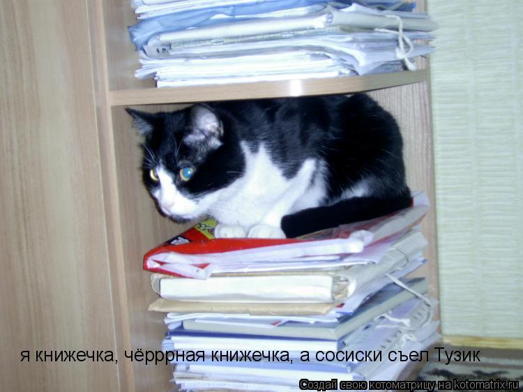 Котоматрица: я книжечка, чёрррная книжечка, а сосиски съел Тузик
