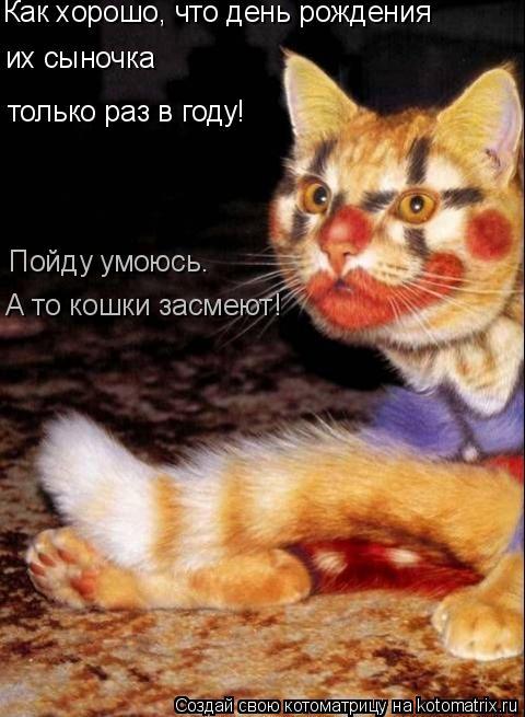 Котоматрица: Как хорошо, что день рождения их сыночка только раз в году! Пойду умоюсь.  А то кошки засмеют!
