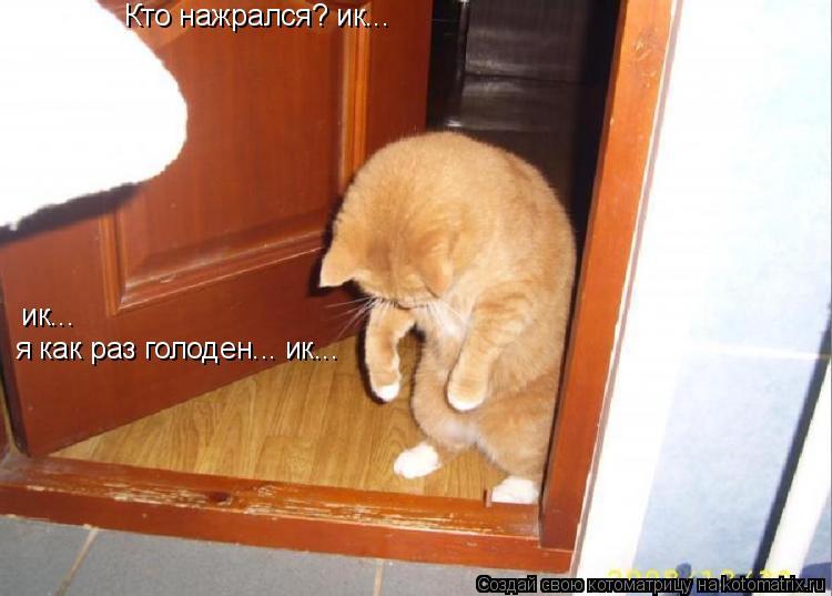 Котоматрица: Кто нажрался? ик... я как раз голоден... ик...  ик...