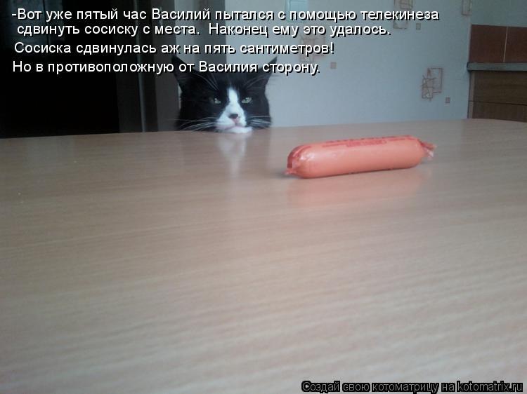 Котоматрица: -Вот уже пятый час Василий пытался с помощью телекинеза Но в противоположную от Василия сторону.  сдвинуть сосиску с места.  Наконец ему это