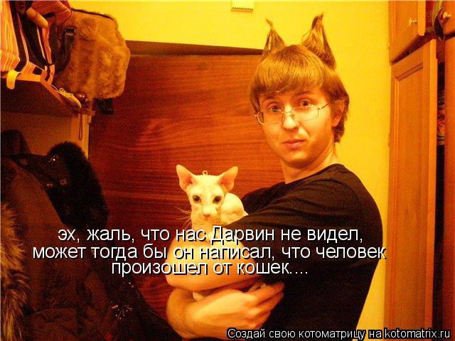 Котоматрица: может тогда бы он написал, что человек  эх, жаль, что нас Дарвин не видел, произошел от кошек....