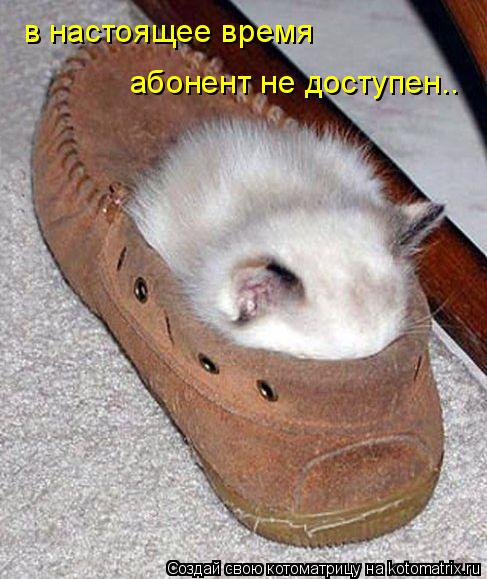 http://kotomatrix.ru/images/lolz/2009/05/14/lw.jpg