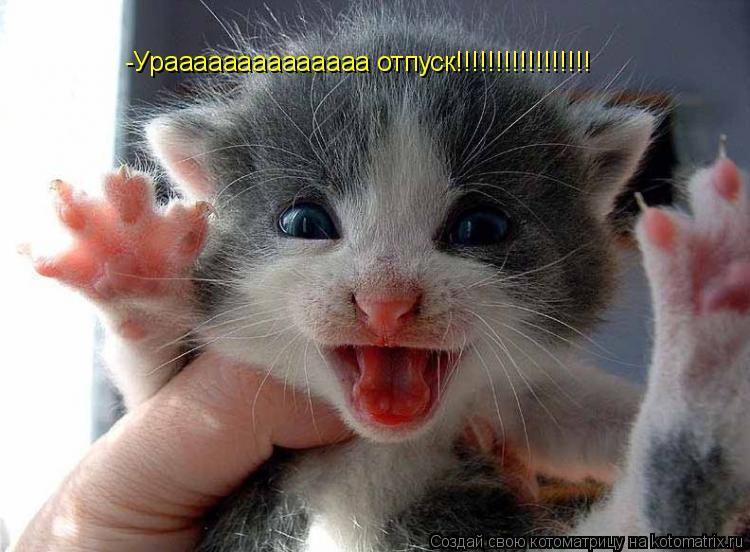 Котоматрица: -Ураааааааааааааа отпуск!!!!!!!!!!!!!!!!!