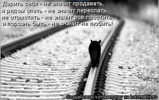 Котоматрица: Дарить себя - не значит продавать, и рядом спать - не значит переспать, не отомстить - не значит все простить, и порознь быть - не значит не люб