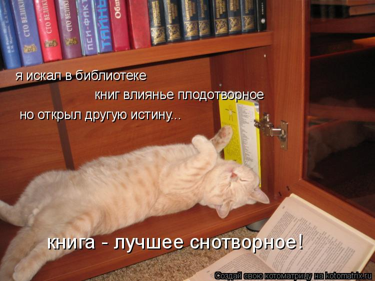 Котоматрица: я искал в библиотеке книг влиянье плодотворное  но открыл другую истину... книга - лучшее снотворное!