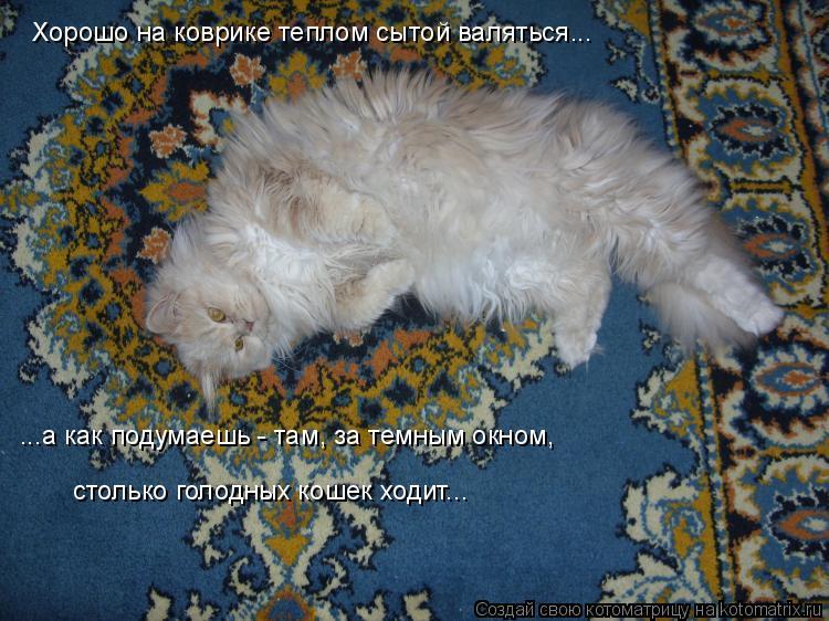 Котоматрица: Хорошо на коврике теплом сытой валяться... ...а как подумаешь - там, за темным окном,  столько голодных кошек ходит...